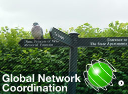 Global Network Coordination
